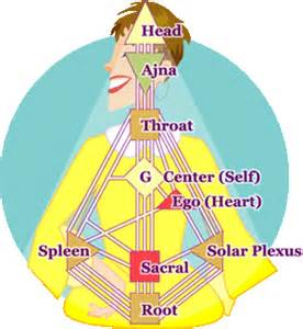 human design system acoustichealth healing coversations