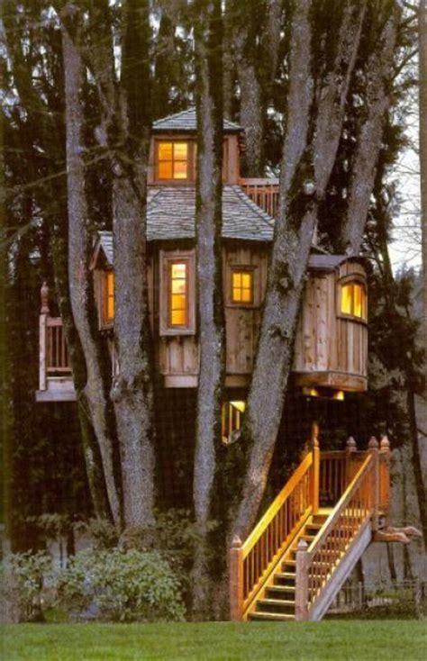 pretty tree houses beautiful tree houses 35 pics izismile com