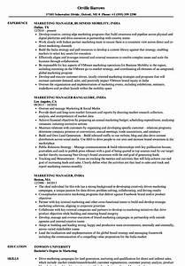 Basic Resume Examples India Best Resume Examples