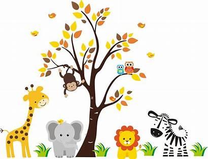 Jungle Clipart Clip Animal 2324 Animals Safari