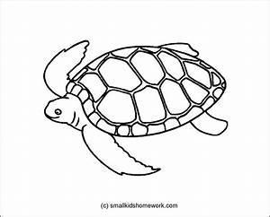 Best Photos of Turtle Outline Clip Art - Sea Turtle ...