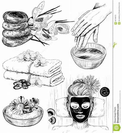 Spa Beauty Drawn Hand Illustrations Illustration Vector