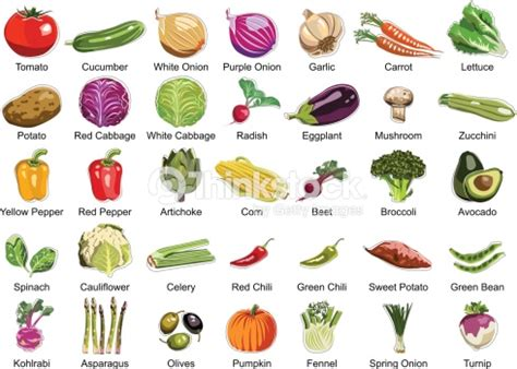 collection   vegetables icons stock vector thinkstock