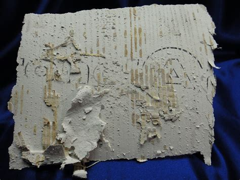 armstrong asbestos sheet flooring reverse side  photo