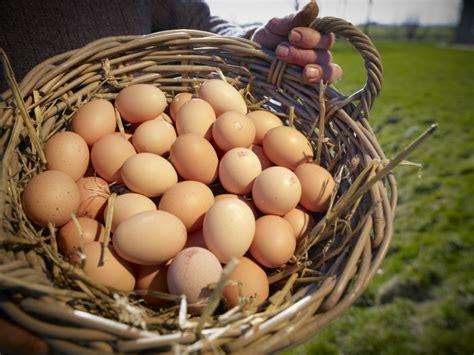 Veel eieren eten