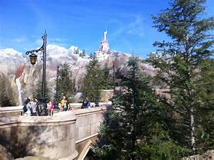 Review: The Enchanted Forest at the Magic Kingdom