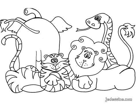 animales salvajes de la selva  animales paginas