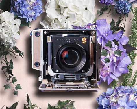 chambre photographique occasion la chambre photographique par les yeux de la coccinelle