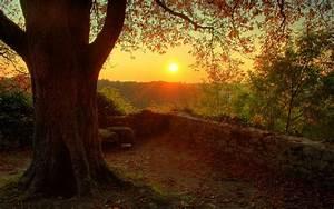 Beautiful Autumn Sunset - Random Wallpaper (32882124) - Fanpop