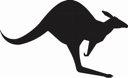 Kangaroo Clipart Stencil Silhouette Animal Transparent Australia