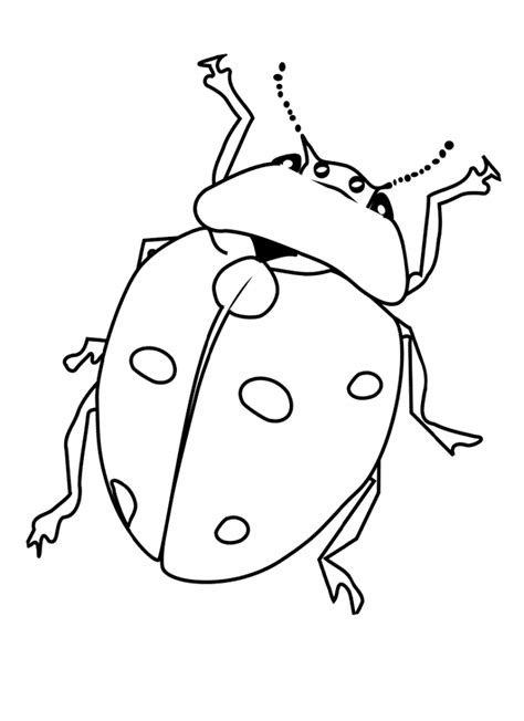 Coloring Insects by Free Printable Bug Coloring Pages For