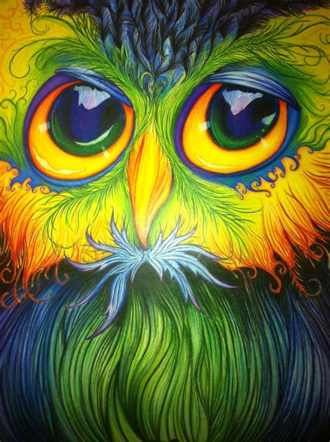 pencil crayon drawing   owl  freehand  artwork