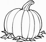 Pumpkin Simple Drawing Coloring Pages Clipartmag sketch template