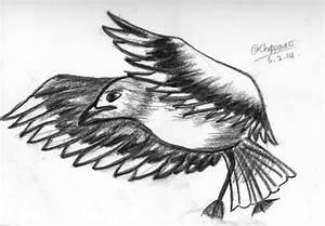 Bird - charcoal pencil by Chippeido on deviantART