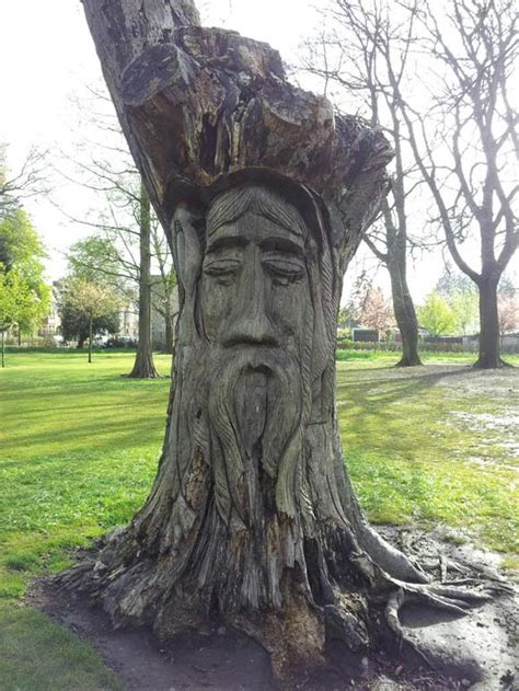 amazing tree wood carving pictures