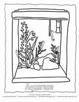 Coloring Aquarium Pages Pet Clipart Tank Seahorse Turtle Fish Pets Cat Animal Wonderweirded Seahorses Whith Fishes Preschool Collection Printable Code sketch template