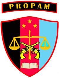 divisi profesi  pengamanan kepolisian negara republik