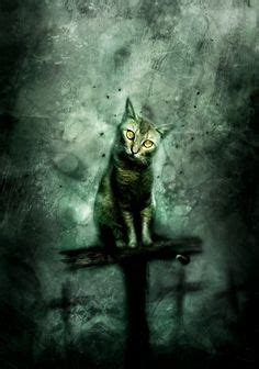 1000+ Images About Stephen King On Pinterest Stephen