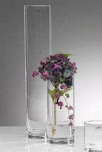 Glasvase 50 Cm Hoch : glasvase cyli vase glasvase tischvase blumenvase zylinder 50 cm ebay ~ Bigdaddyawards.com Haus und Dekorationen