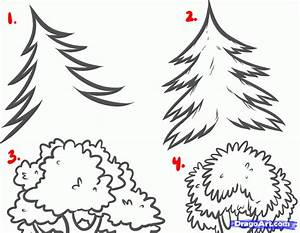 How to Draw Forests, Forest Backgrounds, Step by Step ...