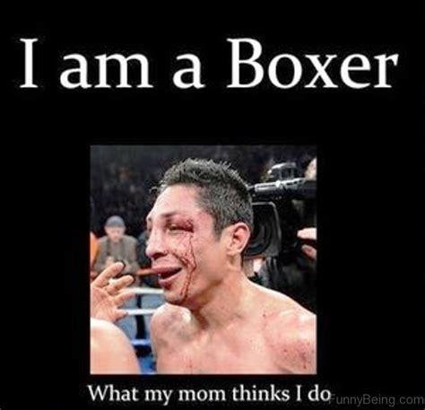 Boxer Meme - 70 boxing memes for you