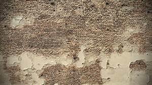 Wallpaper for Wall - WallpaperSafari
