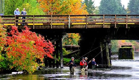Fly-fishing, Fall, Comox Valley   Adventure Fotography