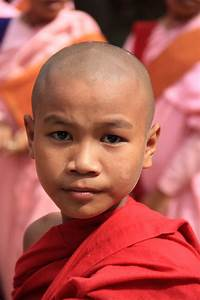 Free stock photo of Asian, Buddhism, burma