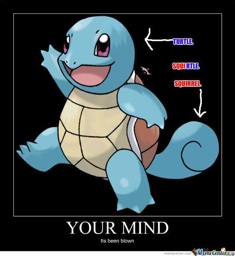 Squirtle Meme - 491 best images about humor on pinterest pokemon cat memes and fairy tail meme
