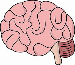 Image For Free Brain Health High Resolution Clip Art