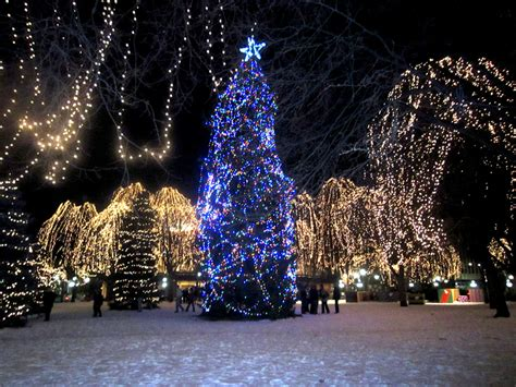 christmas tree lights best christmas tree lights to