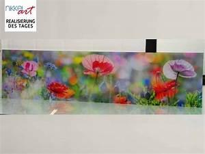 Küchenrückwand Glas Foto : k chenr ckwand foto glas mohn ~ Michelbontemps.com Haus und Dekorationen