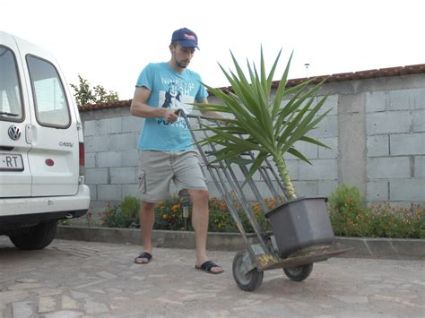 How To Move Big Pots 4 Steps (with Pictures) Wikihow