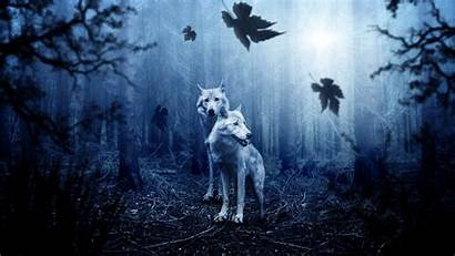 4k Wolves Forest Wallpapers 1080 1920 2160