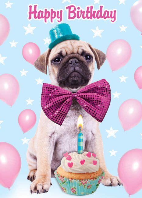 Happy Birthday Pug Meme - happy birthday happy birthday pinterest happy birthday birthdays and birthday greetings