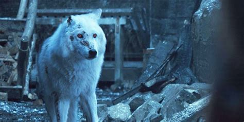 jon snows goodbye  ghost  game  thrones fans furious