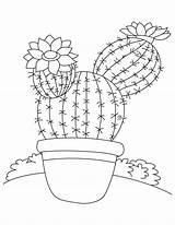 Cactus Coloring Pages Saguaro Printable Flower Tree Drawing Desert Tall Template Bestcoloringpages Barrel Flowers Getdrawings Patterns Sketch Children Mandalas Templates sketch template