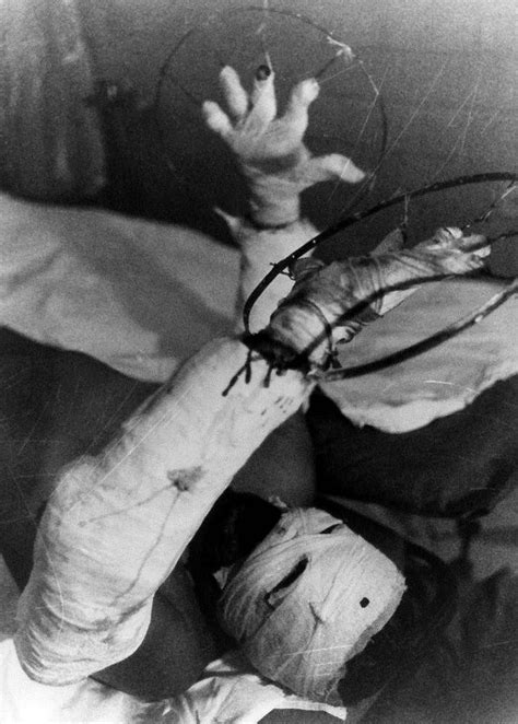 Chernobyl Series, Part 3: Post-Accident | Historia