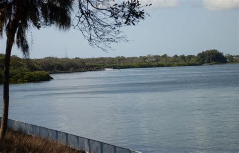 philippe park pinellas county safety harbor fl