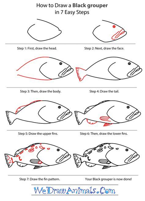 grouper draw step wedrawanimals tutorial