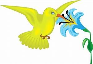 Yellow Hummingbird With Flower Clip Art at Clker.com ...