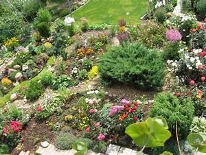 Blumen Für Steingarten : steingarten planung pflanzenauswahl zwerggeh lze garten pinterest steingarten kakteen und ~ Markanthonyermac.com Haus und Dekorationen
