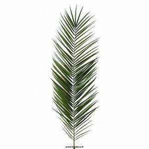 Phoenix Canariensis Entretien : palme phoenix canariensis feuillage artificiel ~ Melissatoandfro.com Idées de Décoration