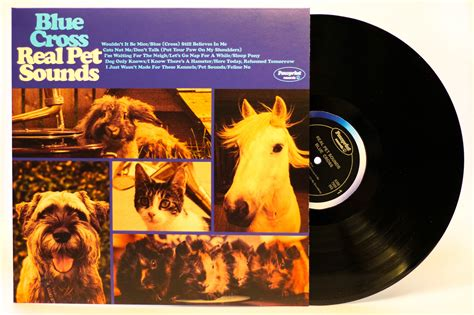pet sounds wouldnt   nice  find  home blue cross