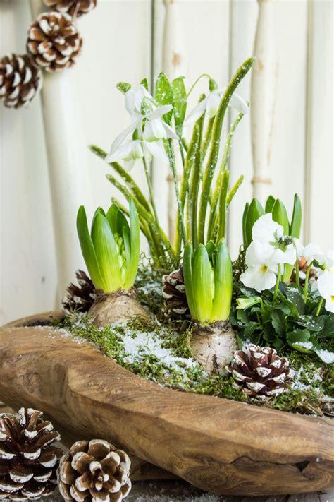 fruehlingshafte gruesse im winter haus garten dekoration