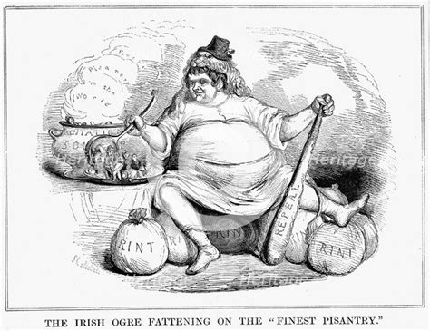 irish ogre fattening   finest pisantry