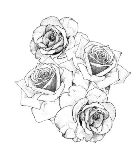 image result   roses  drawing floral tattoos