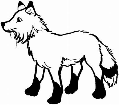 Fox Coloring Pages Animals Foxy