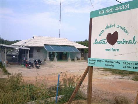 lanta animal welfare ko lanta