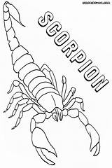 Scorpion Coloring Pages Print Colorings sketch template